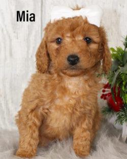 Mia 01