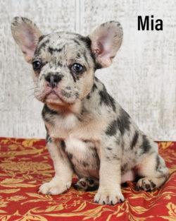 Mia 02 1