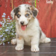 Sally 05 1